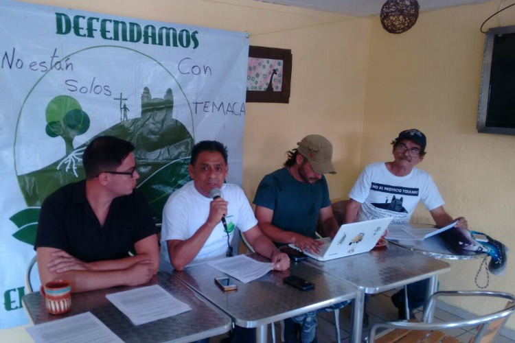 Acusan a Ecología de Tonalá de arrancar árboles