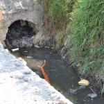 Acusan a familia de María Elena Limón de contaminar presa