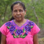 Atacan a la caravana de Marichuy Patricio, candidata indígena a la presidencia de México