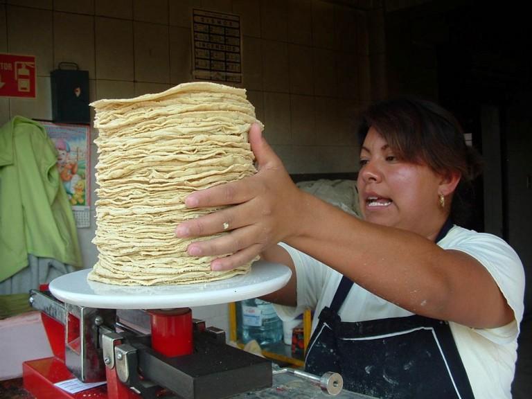 Diputados buscan prohibir venta de tortillas en «tienditas»