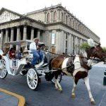 Por altas temperaturas suspenden uso de calandrias con caballo