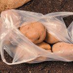 Reglamentos anti plástico, incumplen regulación: CANACO