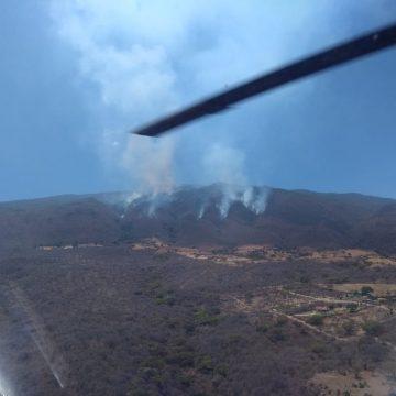 Multas de hasta 130 mil pesos a quienes causen incendios forestales en Tlajomulco